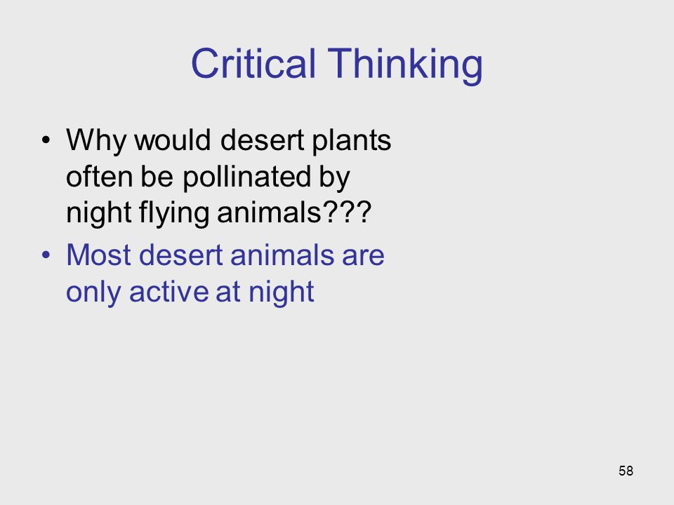 Critical Thinking Why would desert plants often be pollinated by night flying animals .