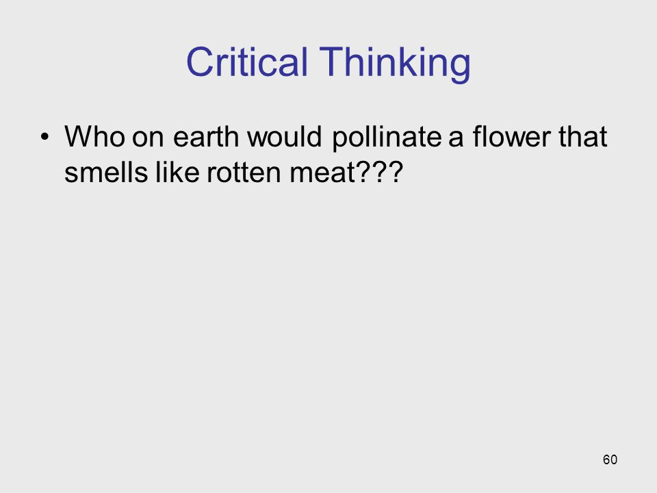 Critical Thinking Who on earth would pollinate a flower that smells like rotten meat