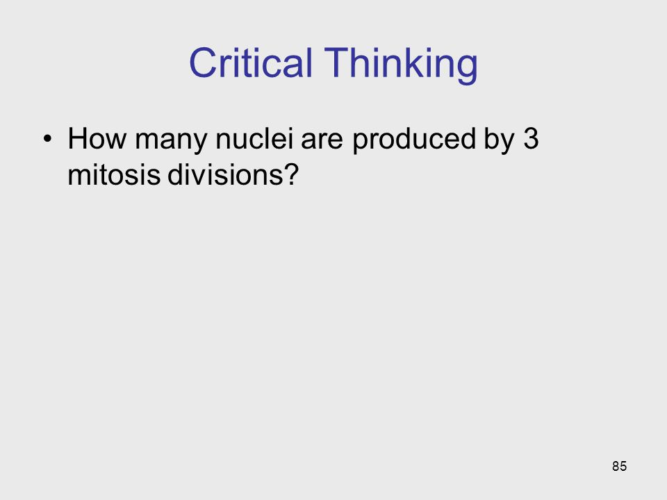 Critical Thinking How many nuclei are produced by 3 mitosis divisions