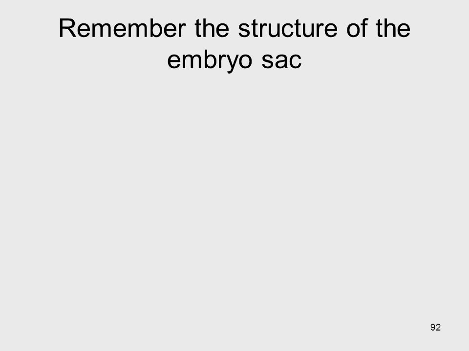 Remember the structure of the embryo sac