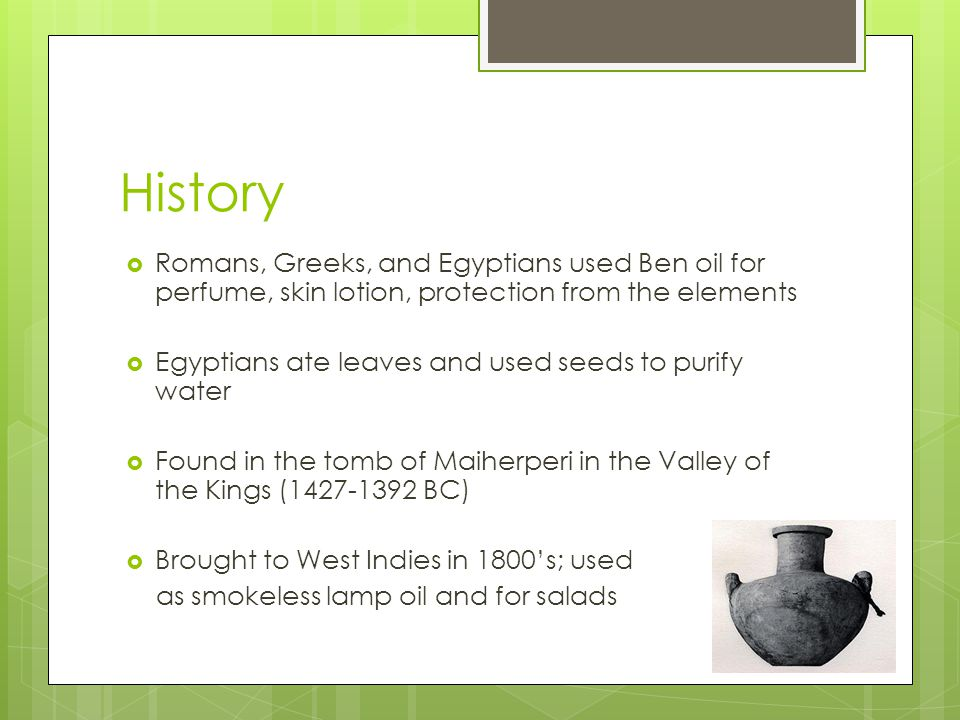 History Romans, Greeks, and Egyptians used Ben oil for perfume, skin lotion, protection from the elements.