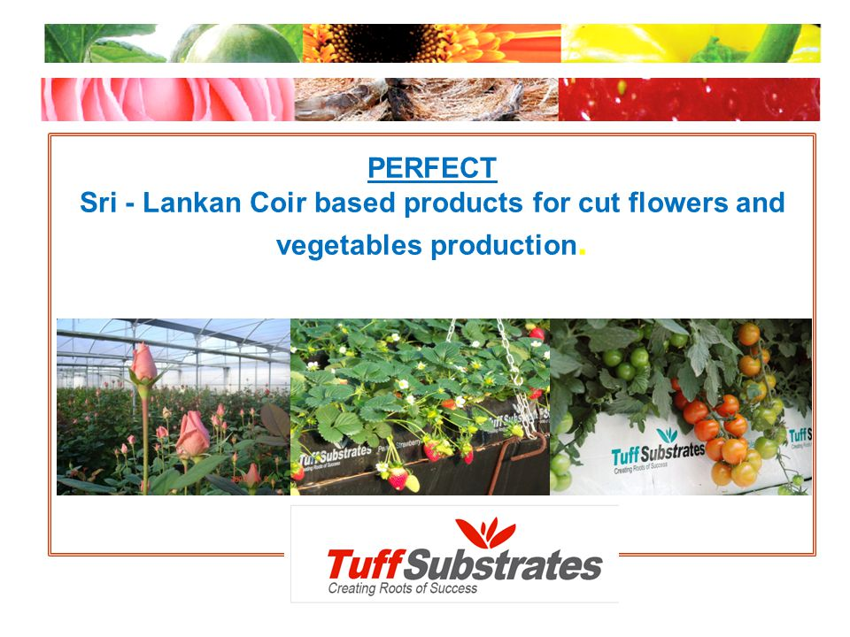 PERFECT Sri - Lankan Coir based products for cut flowers and vegetables production.