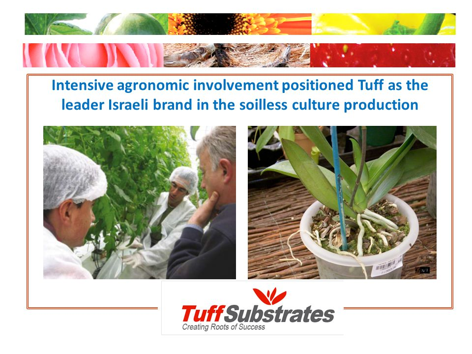 Intensive agronomic involvement positioned Tuff as the leader Israeli brand in the soilless culture production