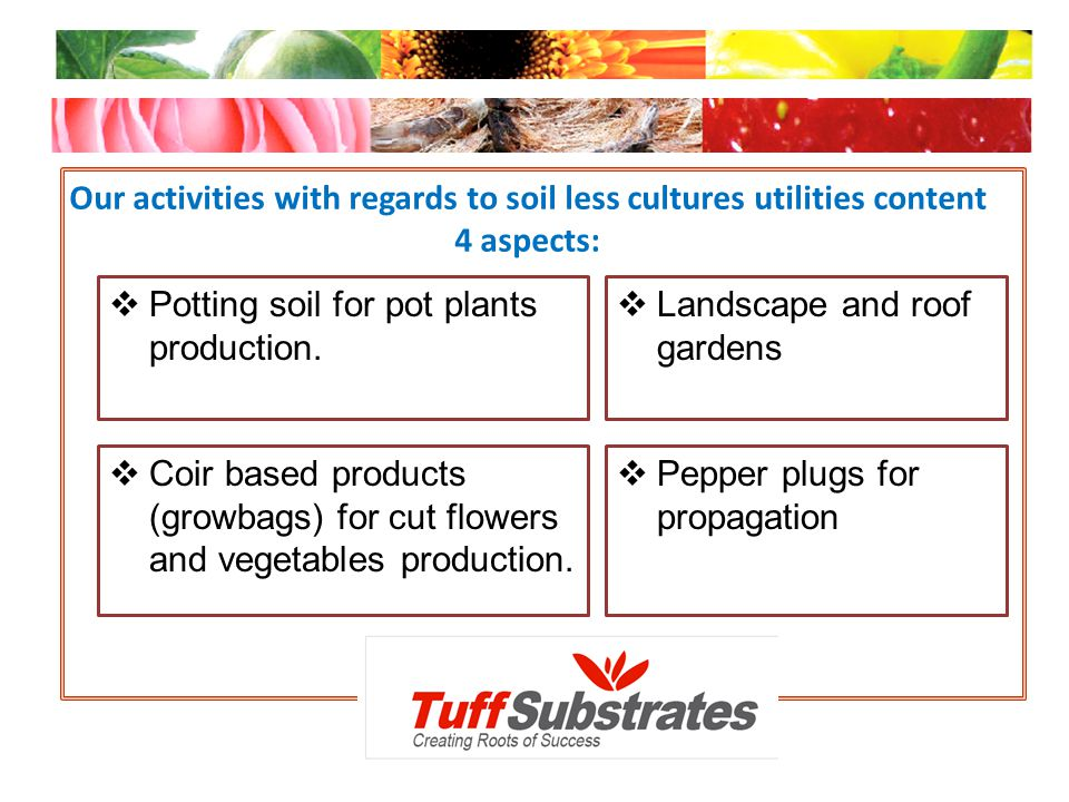 Our activities with regards to soil less cultures utilities content 4 aspects:
