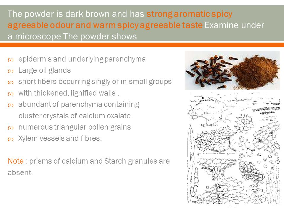 The powder is dark brown and has strong aromatic spicy agreeable odour and warm spicy agreeable taste Examine under a microscope The powder shows
