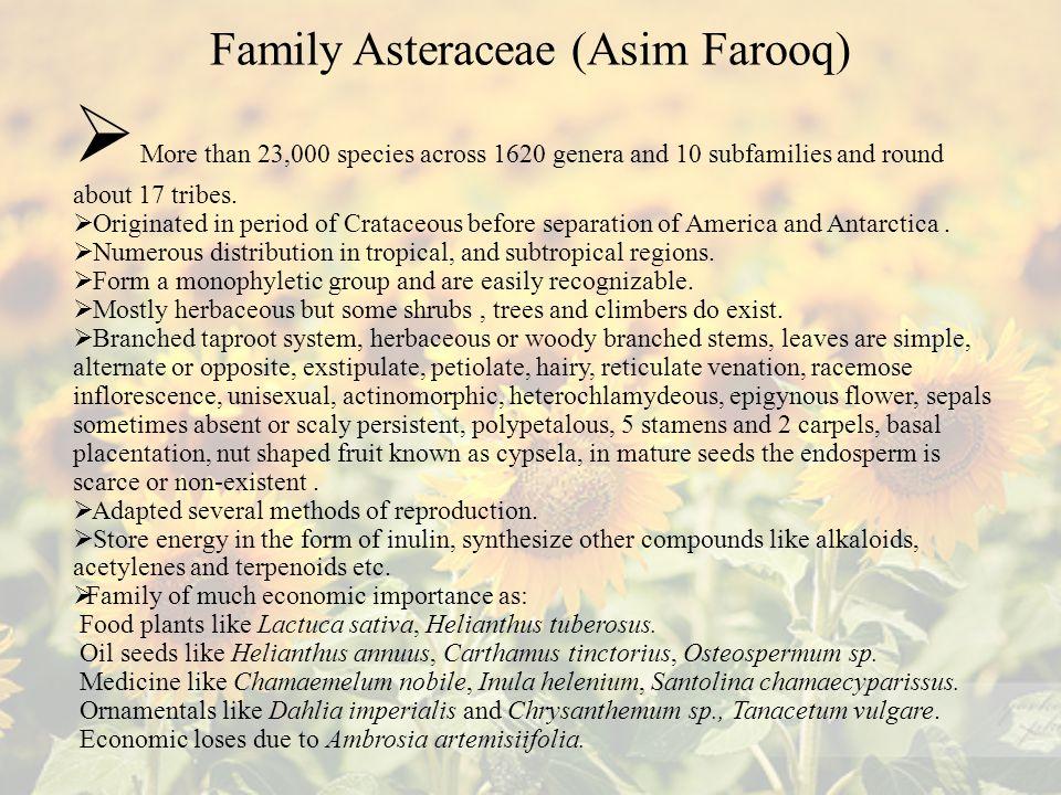 Family Asteraceae (Asim Farooq)