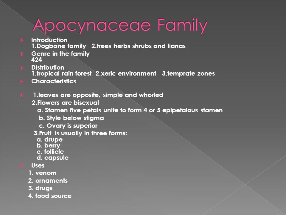 Apocynaceae Family Introduction 1.Dogbane family 2.trees herbs shrubs and lianas. Genre in the family 424.