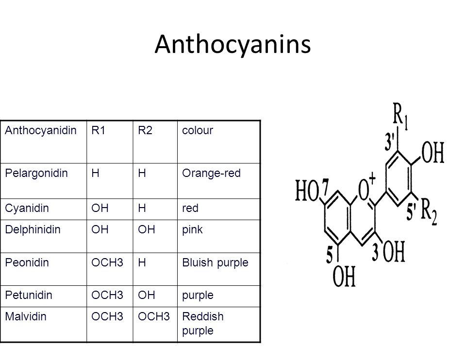 Anthocyanins Anthocyanidin R1 R2 colour Pelargonidin H Orange-red