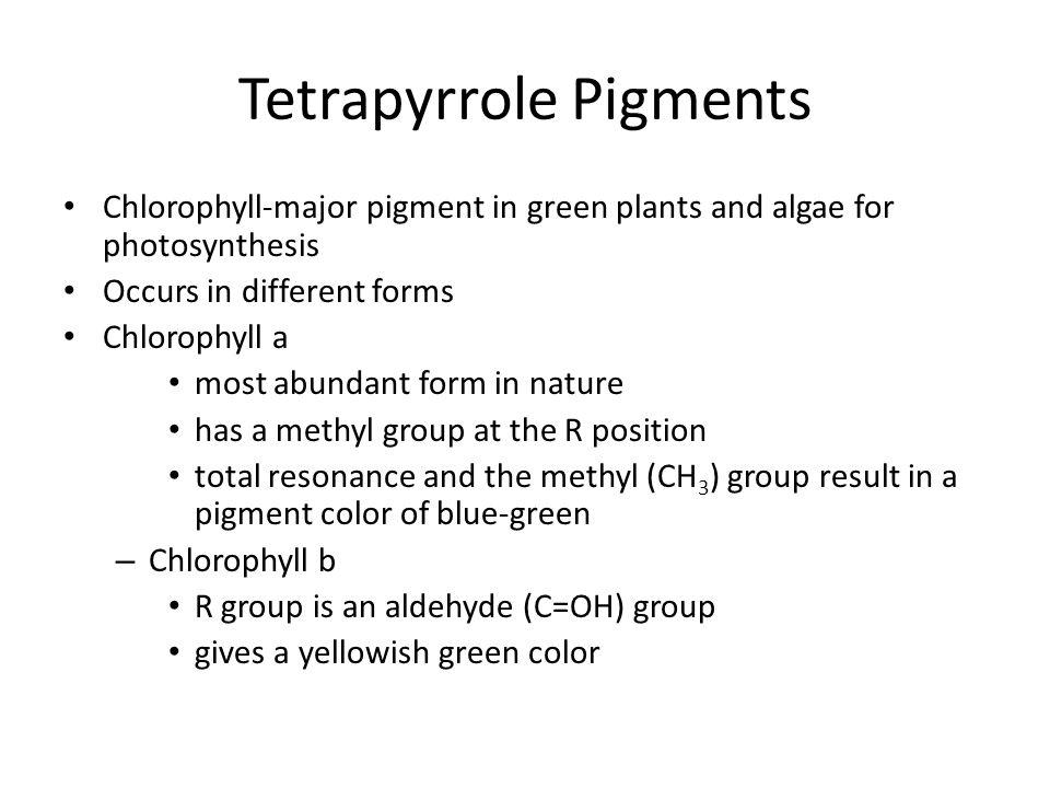 Tetrapyrrole Pigments
