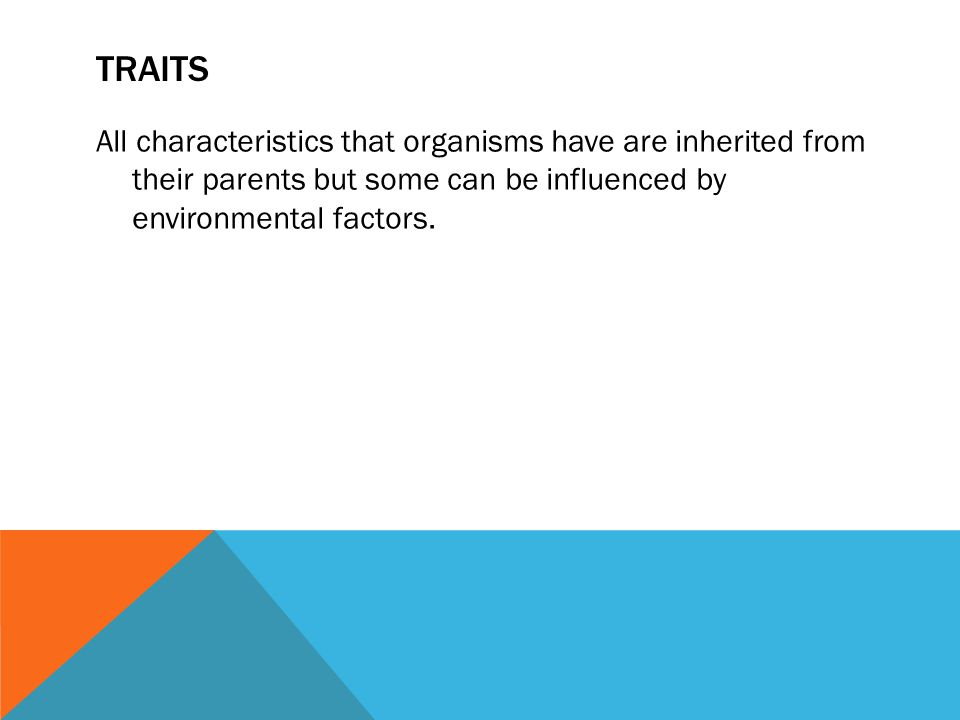 Traits All characteristics that organisms have are inherited from their parents but some can be influenced by environmental factors.