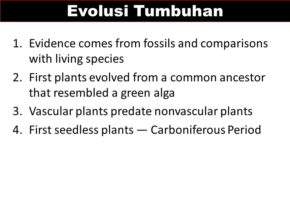 Evolusi Tumbuhan Evidence comes from fossils and comparisons with living species.