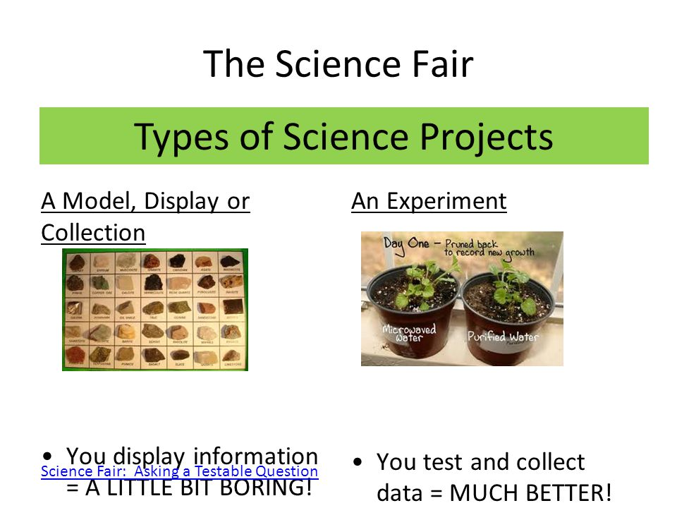 Types of Science Projects
