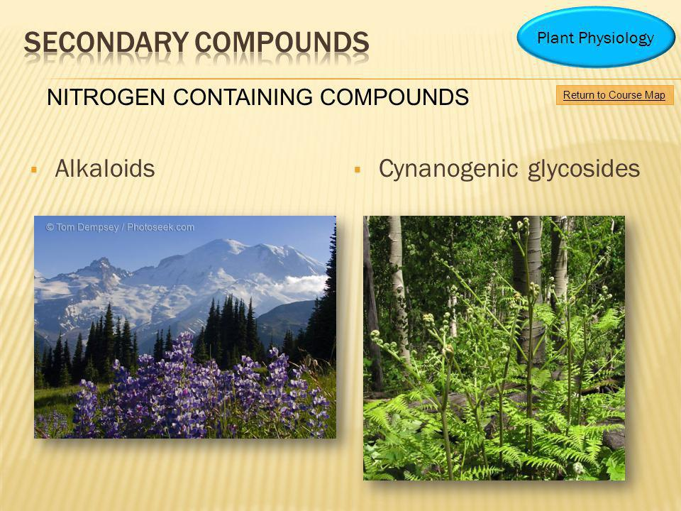 Secondary Compounds Alkaloids Cynanogenic glycosides