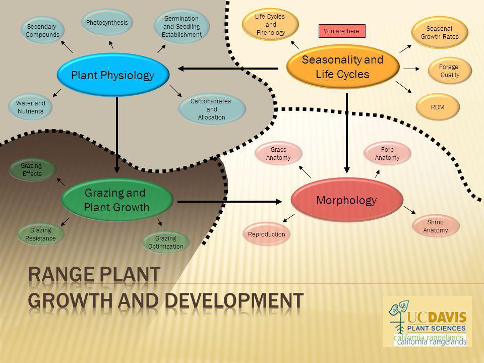 Range Plant Growth and Development
