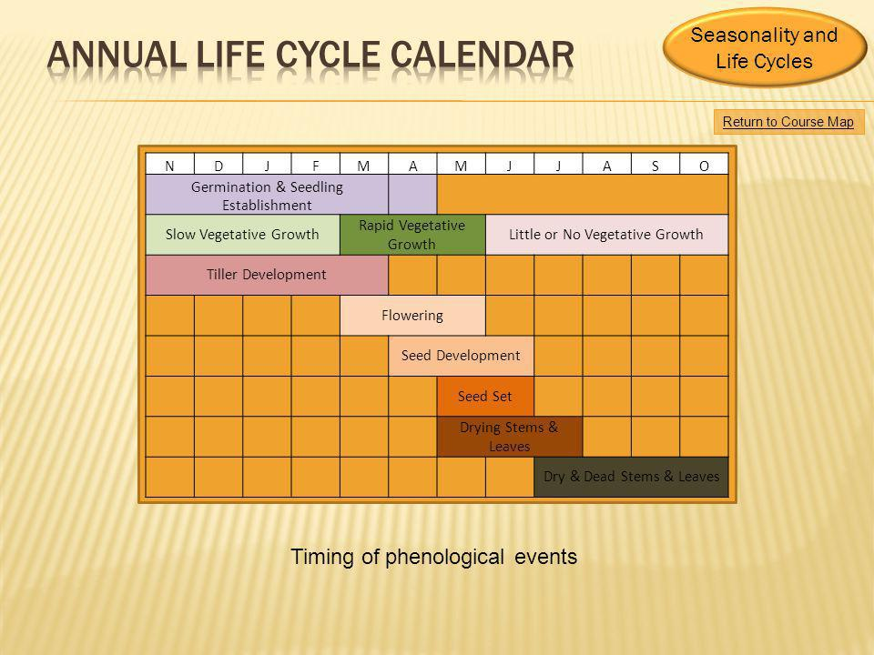 annual life cycle CALENDAR