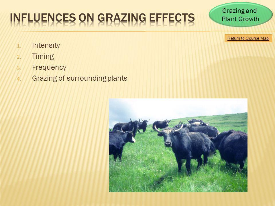 Influences on Grazing effects