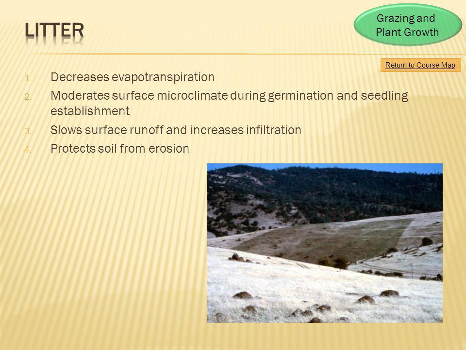Litter Decreases evapotranspiration
