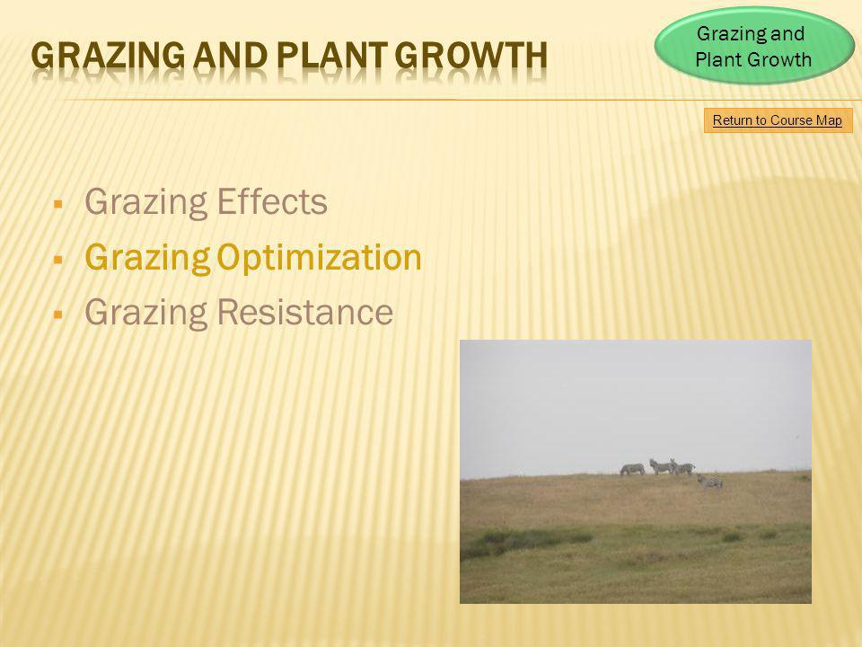 Grazing and Plant Growth