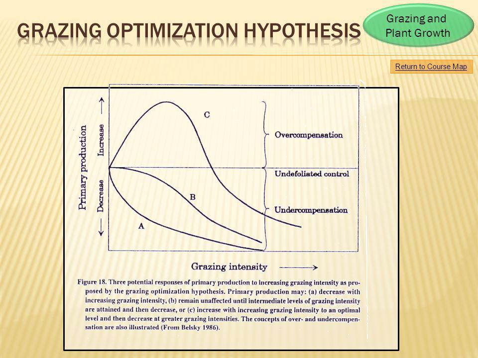Grazing Optimization HYPOTHESIS