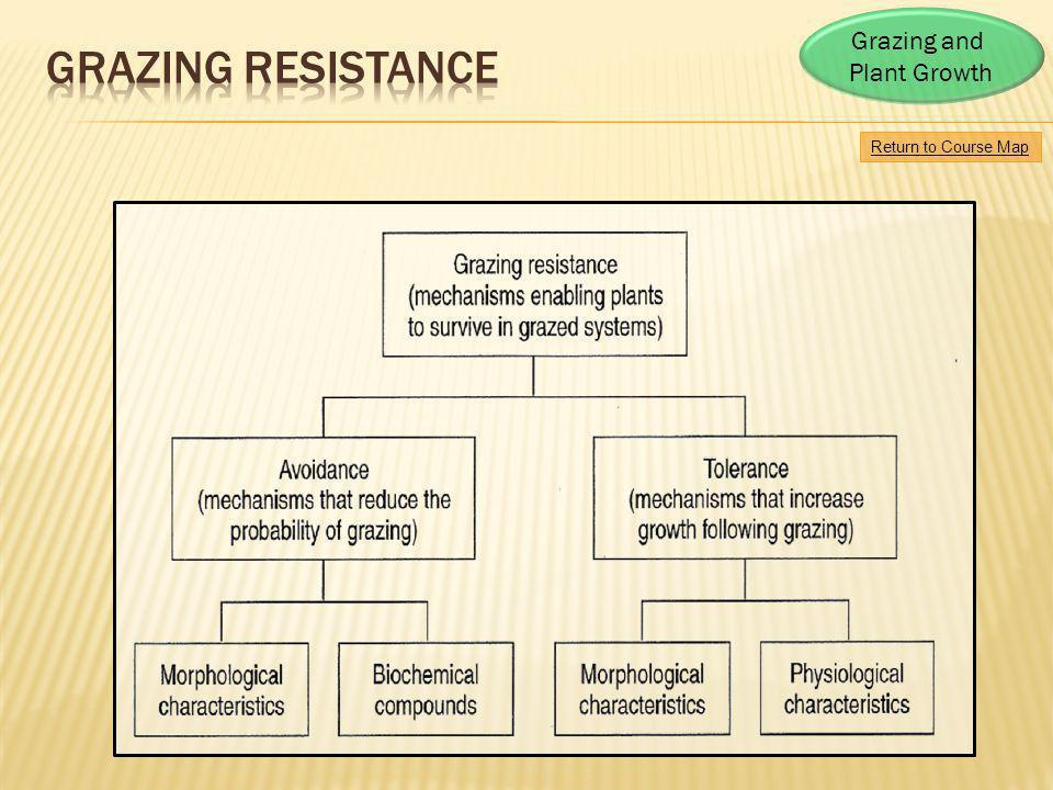 Grazing Resistance Grazing and Plant Growth