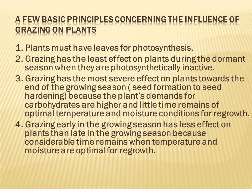 A few basic principles concerning the influence of grazing on plants