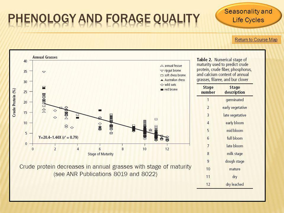 Phenology and forage quality