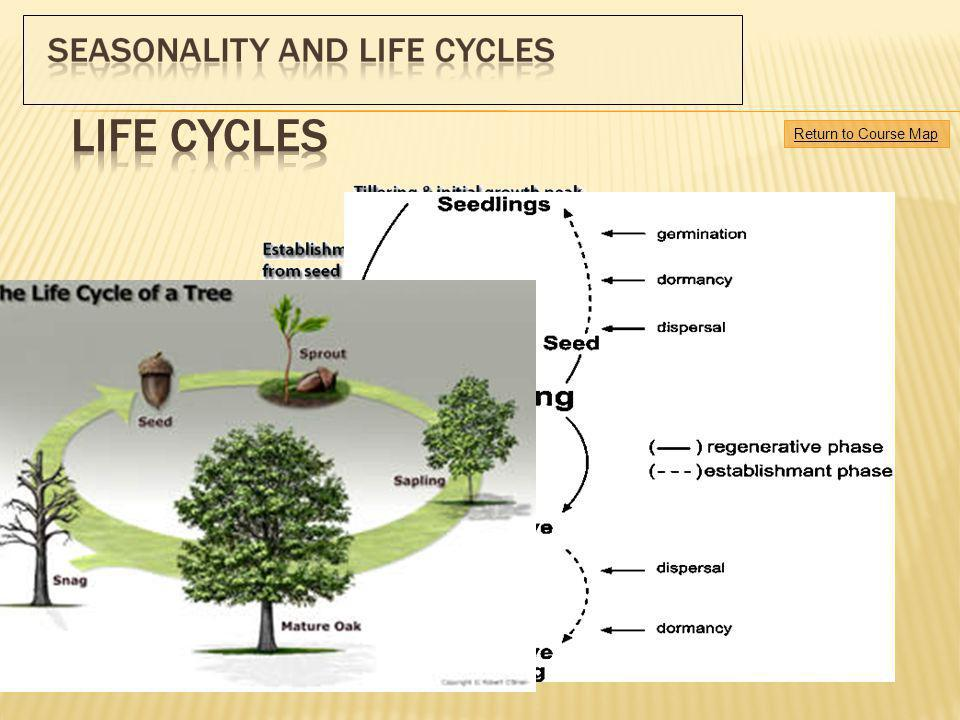 Life cycles Return to Course Map.