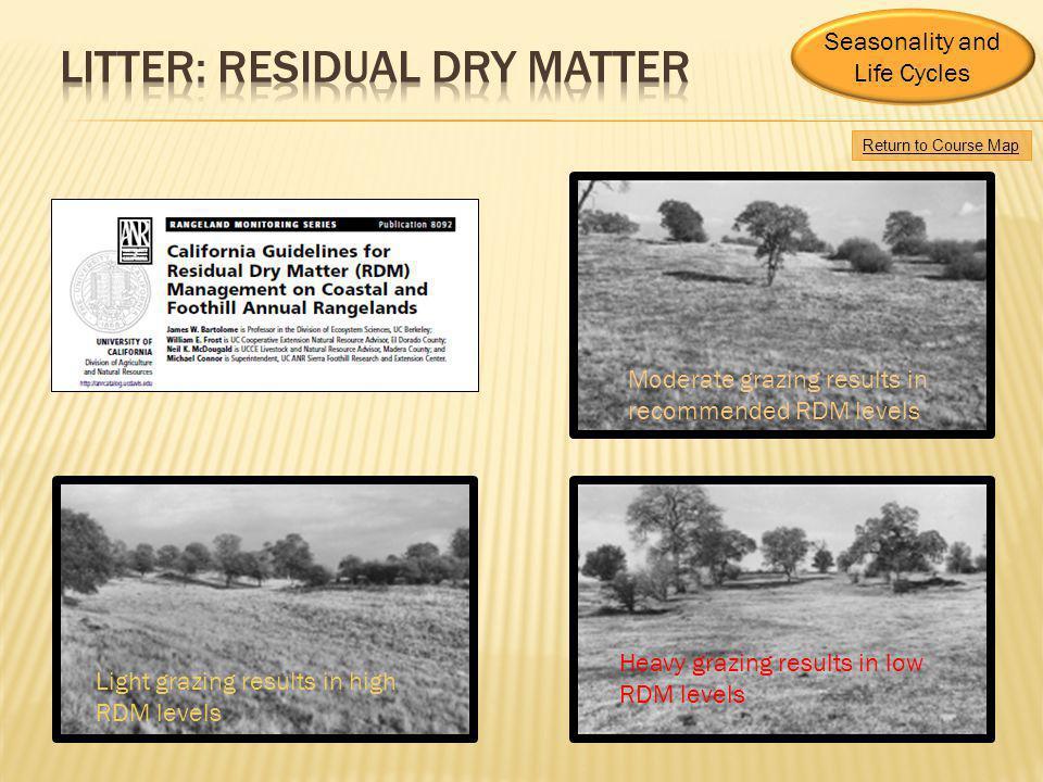 Litter: Residual Dry matter