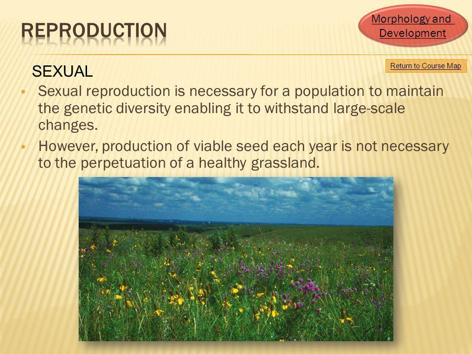 Morphology and Development. Reproduction. SEXUAL. Return to Course Map.