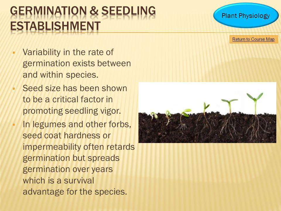 Germination & Seedling Establishment