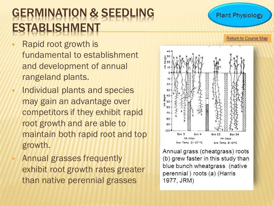 Germination & Seedling Establishment