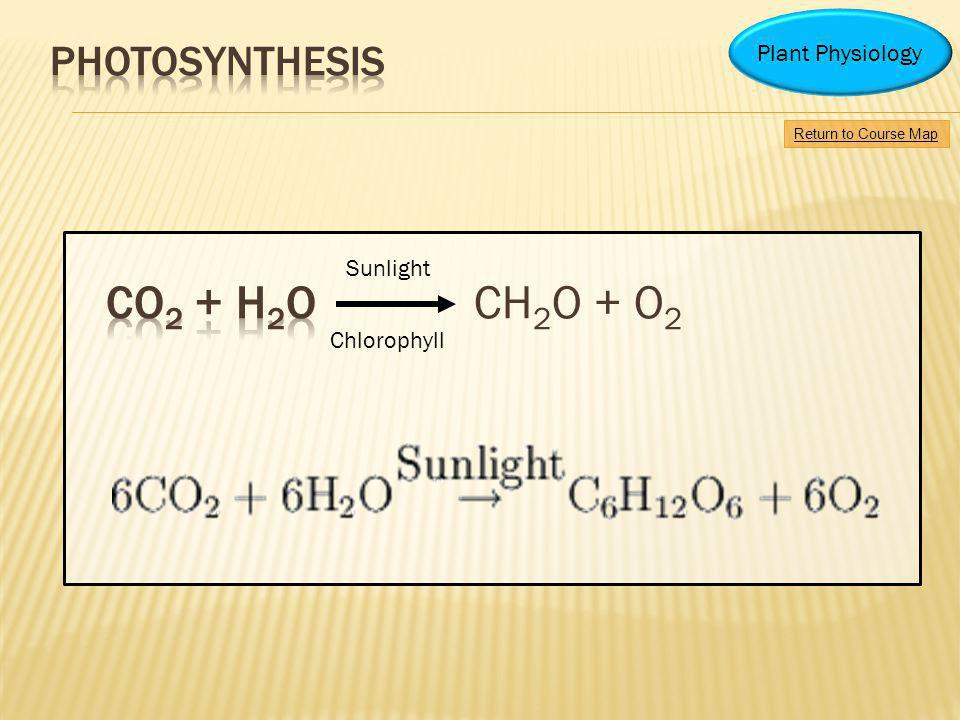 CO2 + H2O CH2O + O2 Photosynthesis Plant Physiology Sunlight