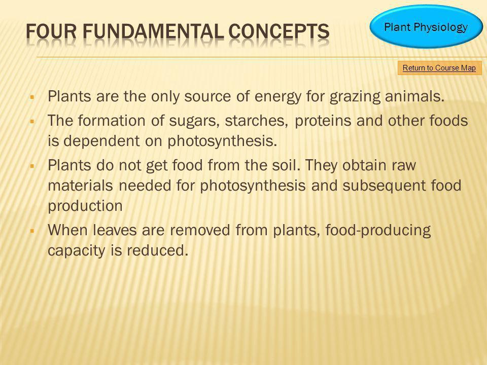 Four Fundamental Concepts