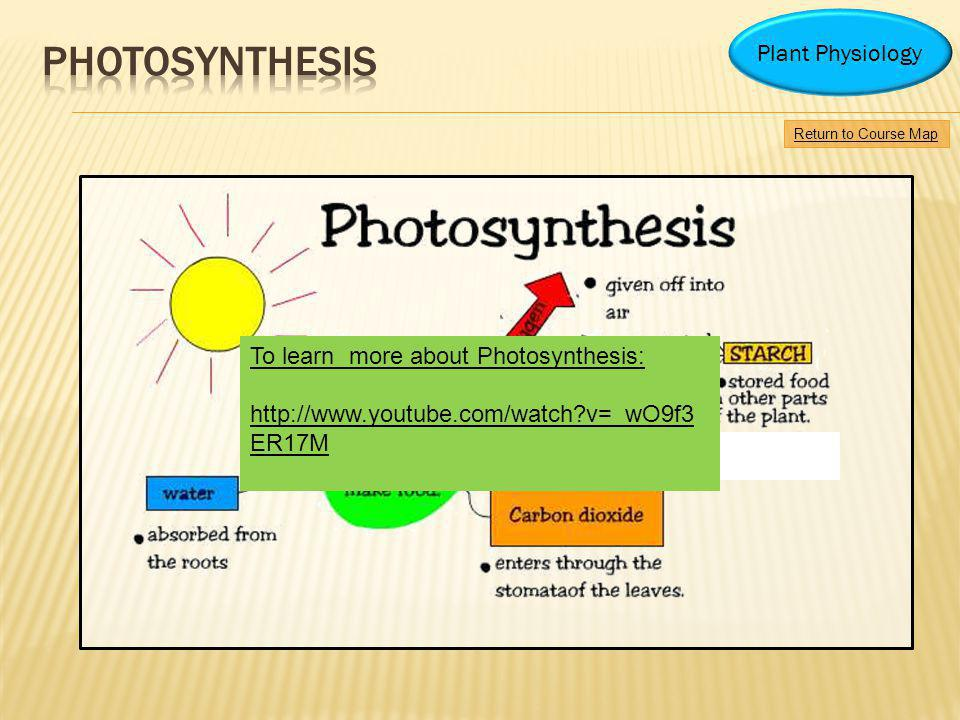 photosynthesis Plant Physiology To learn more about Photosynthesis: