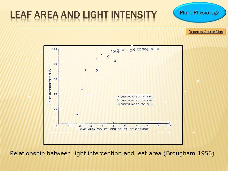 Leaf area and light intensity