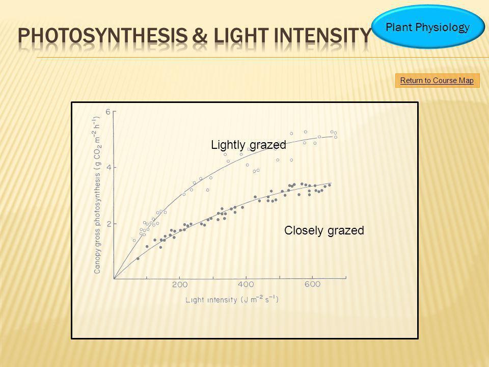 Photosynthesis & light intensity