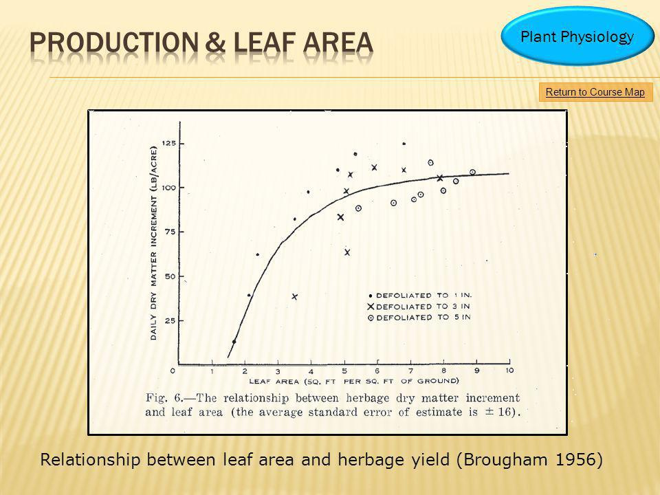 Production & leaf area Plant Physiology