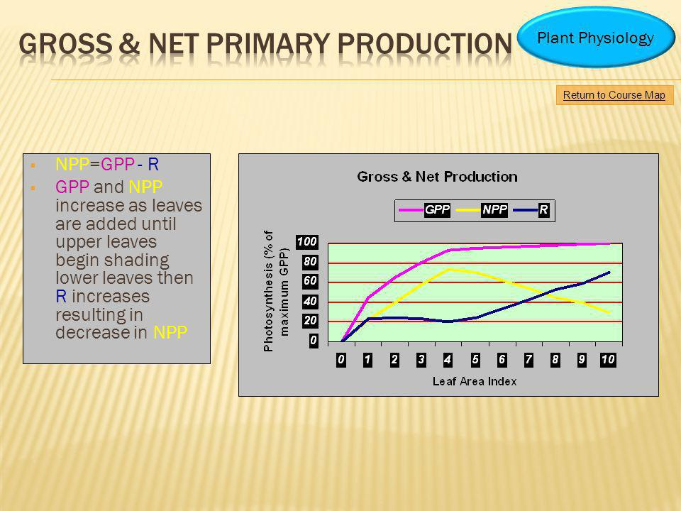 GROSS & NET PRIMARY PRODUCTION
