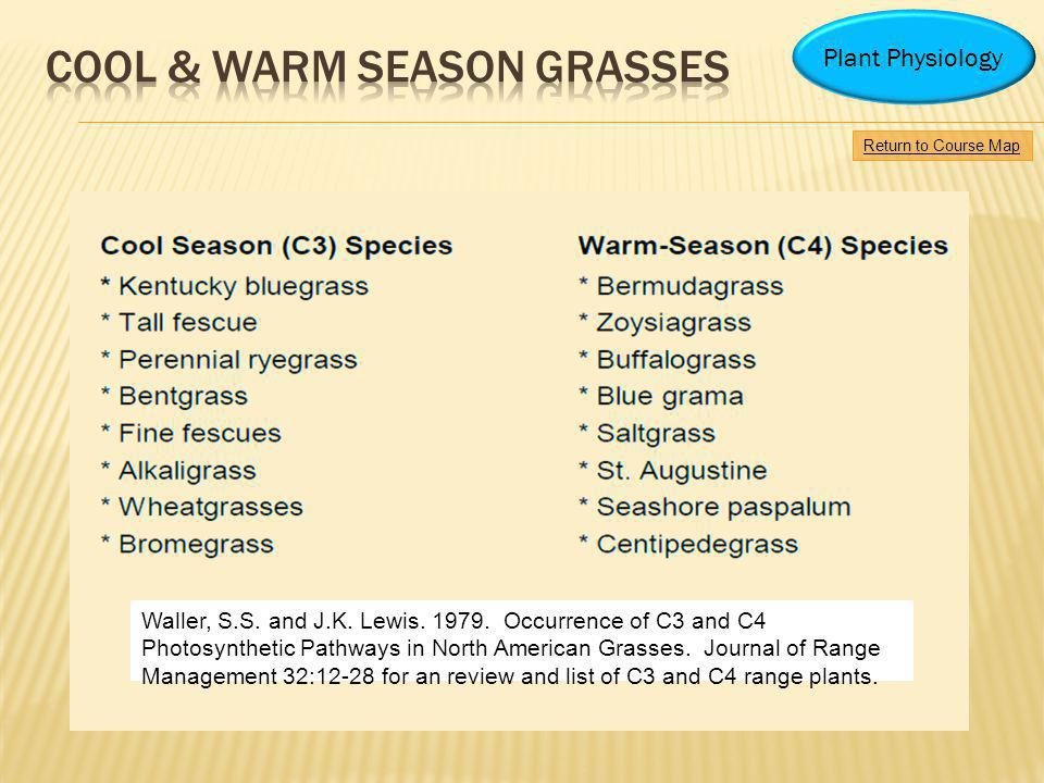 Cool & warm season grasses