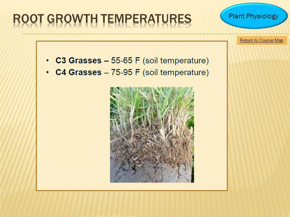 Root growth temperatures