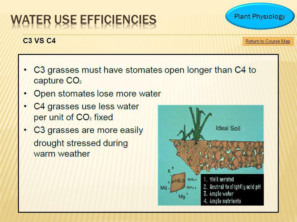 Water use efficiencies