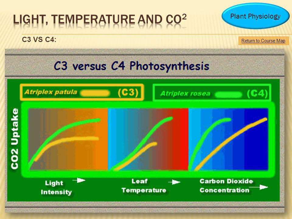 Light, Temperature and CO2