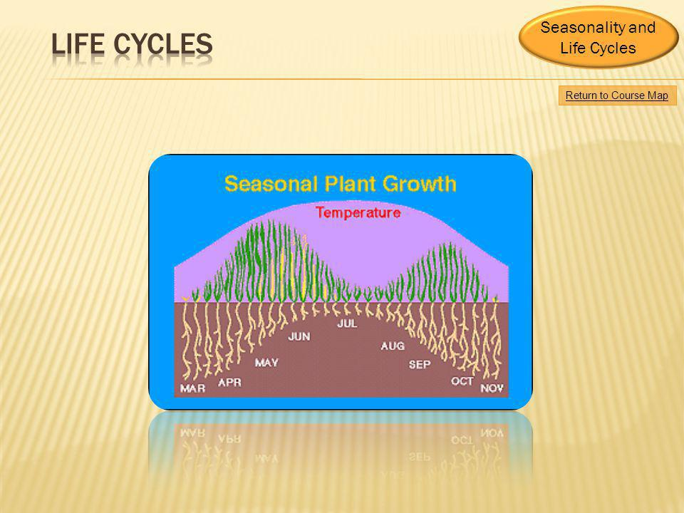 Life cycles Seasonality and Life Cycles