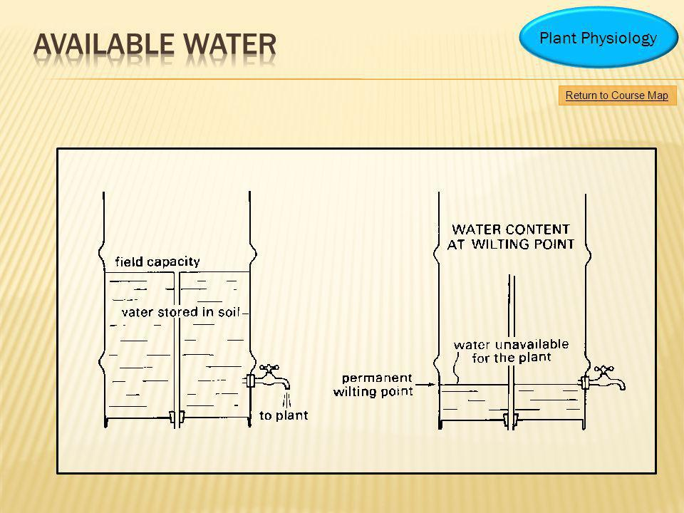 Available water Plant Physiology