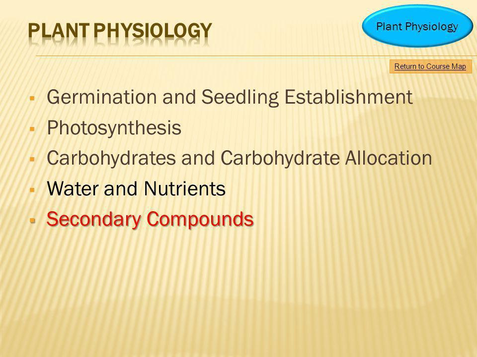 Germination and Seedling Establishment Photosynthesis