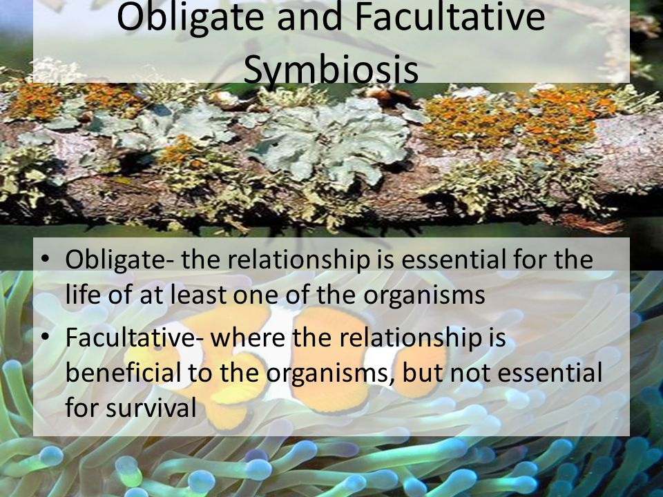 Obligate and Facultative Symbiosis
