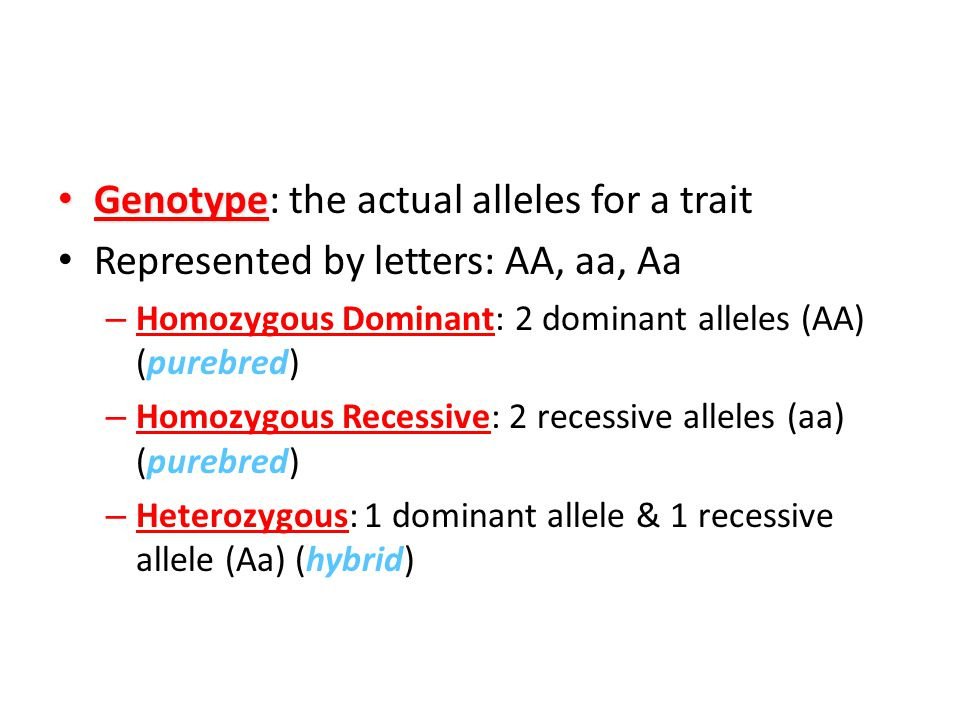 Genotype: the actual alleles for a trait