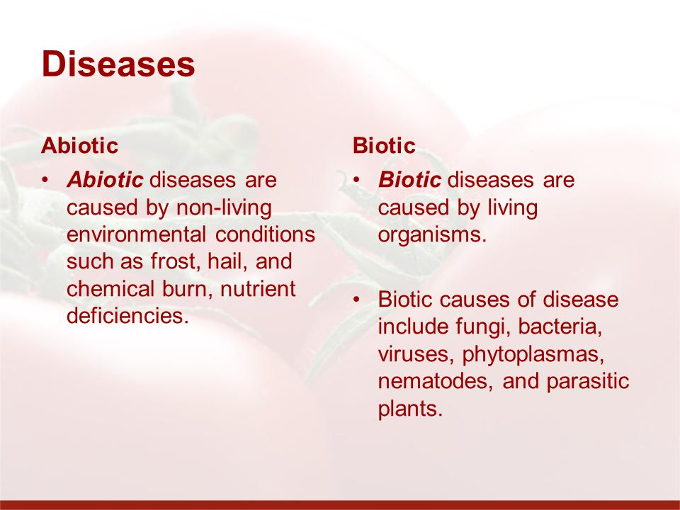 Diseases Abiotic Biotic
