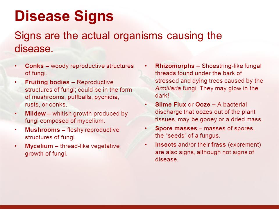 Disease Signs Signs are the actual organisms causing the disease.