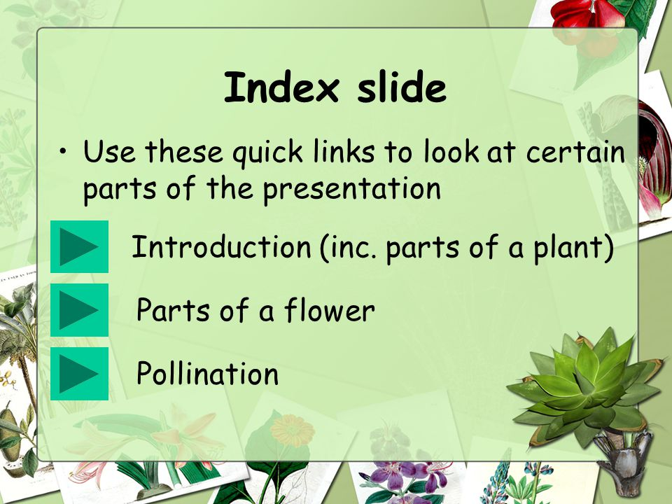 Index slide Use these quick links to look at certain parts of the presentation. Introduction (inc. parts of a plant)